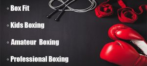 Willies Gym Boxing Club Colchester Kids Boxing Amateur Boxing Colchester