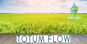 Totum Flow Water Softener Colchester Water Filtration Water Treatment